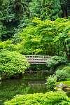 Gyönyörű japán kert (id: 12200) falikép keretezve