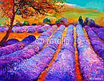 Lavender mezők (id: 4400) tapéta
