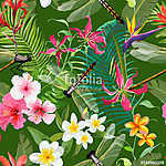 Tropical Floral Seamless Pattern with Dragonflies. Nature Backgr vászonkép, poszter vagy falikép
