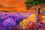 Lavender mezők (id: 4401) falikép keretezve