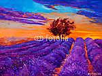 Lavender mezők (id: 4404)