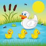 anya kacsa kacsacskán a tó - vektoros illusztráció, eps (id: 4505) többrészes vászonkép
