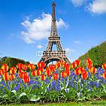 Eiffel-torony tavasszal, Franciaország (id: 9306)