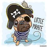 Cute Pug Dog in a pirate hat (id: 19008) falikép keretezve