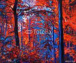 Őszi erdő (id: 4408) vászonkép óra