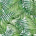 Az akvarell trópusi pálma levelei zökkenőmentesek. Vektor illusz (id: 11610) vászonkép óra