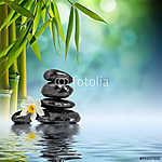 Kövek és bambusz a vízen narcissus virág (id: 4610) többrészes vászonkép