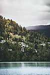 Zöldellő domboldal, Szlovénia (id: 17612)
