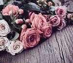 pink and beige roses (id: 14014) falikép keretezve