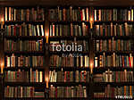 Bookshelf. Seamless texture (vertically and horizontally) (id: 13415)