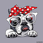 French Bulldog portrait in a headband and with glasses. Vector i (id: 14415)