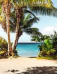 Álomtengerpart, Puerto Rico  (id: 17215) tapéta