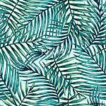 Az akvarell trópusi pálma levelei zökkenőmentesek. Vektor illusz (id: 11616)