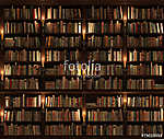 Bookshelf. Seamless texture (vertically and horizontally) (id: 13416)