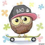 Owl with skateboard (id: 19017) falikép keretezve