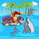 majom fénykép a delfinek - vektoros illusztráció, eps (id: 4517) poszter