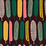 Tollak exotikus színek (id: 19318) falikép keretezve