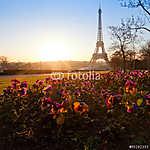 virágok az Eiffel-torony közelében, Párizs, Franciaország (id: 9318) poszter