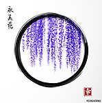 Wisteria in black enso zen circle on white background. Hieroglyp vászonkép, poszter vagy falikép