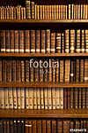 Livres dans une bibliothèque (id: 13419)