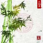 Zöld bambusz a kézzel készített rizspapír hátterén. Hagyományos  (id: 10420) vászonkép