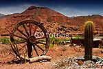 sivatagban (id: 9222) vászonkép