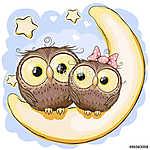 Two Owls on the moon (id: 19023) vászonkép