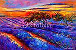 Lavender mezők (id: 4423) vászonkép