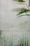 Partner Kollekció: Absztrakt bambuszlevek (id: 18324) poszter