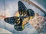 butterfly (id: 13825)