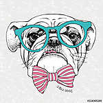 Image the portrait of a bulldog with a bow and in the glasses. V (id: 14426) vászonkép óra