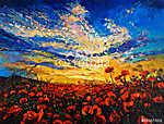 Poppy fields (id: 13328) falikép keretezve