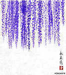 Wisteria hand drawn with ink on rice paper background Traditiona (id: 10529) poszter