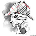 Portrait of a cat in checkered deerstalker with smoking pipe. Ve (id: 14429) falikép keretezve