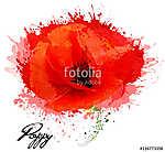 Gyönyörű akvarell virág mákrajz. Vektor. (id: 9729) vászonkép