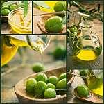 Frissen betakarított olívabogyóolaj, olívaolaj olajfán (id: 4732) többrészes vászonkép