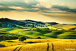 Toszkána tavaszi, dombjai a naplementében. Volterra vidéki tájke (id: 5132) többrészes vászonkép