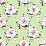 Floral seamless pattern 4. Watercolor background with white flow (id: 14133) tapéta