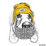 Portrait of Basset Hound dog in a Hipster hat and with scarf. Ve (id: 14435) többrészes vászonkép