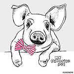 Image of a small pig with a bow. Vector illustration. (id: 14439) tapéta