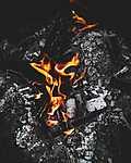 Égő fahasábok (id: 17546) vászonkép