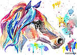 Horse head. Color watercolor illustration. Hand drawn (id: 14847)