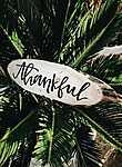 Partner Kollekció: Hálás (id: 16848) tapéta