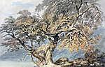 William Turner: Nagy fa (Színverzió 1) (id: 20348) tapéta