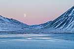 Holdkelte Izlandon (id: 19549)