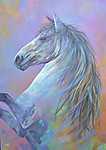 Fehér ló (id: 17650) poszter