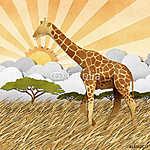 Zsiráf Safari területen újrahasznosított papír háttér (id: 6253) falikép keretezve