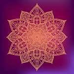 Flower hand drawn mandala graphic element on dark colorful backg (id: 13055) poszter