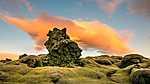 Izlandi táj (id: 19556)
