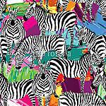 zebra fekete-fehér minta, festett háttér (id: 4556)